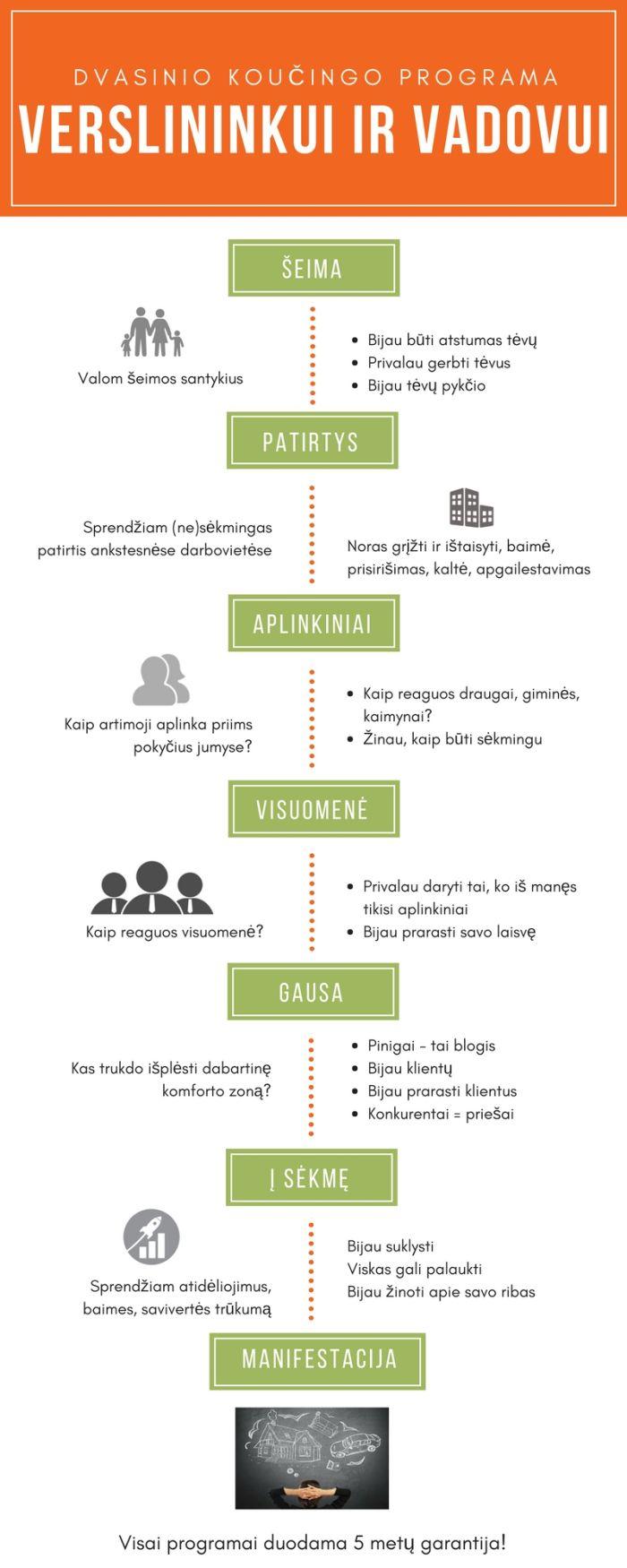 Koučingo programa verslininkui ir vadovui